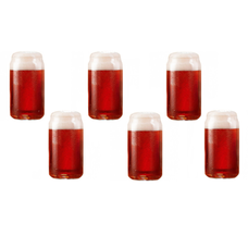 Set of 6 Craft Brew Beer Tasting Glasses